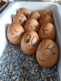 Lustige Eier beim Holiday Breakfast verzaubern den Start des Tages mit einem Lächeln