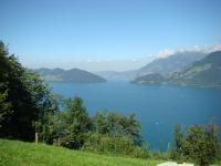Der Vierwaldstättersee bei Beckenried in der Schweiz