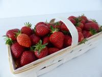 Ein Bild von Erdbeeren - erntefrisch von der Geest zwischen Stade und Buxthude