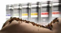 Bildquelle hier und unten: Althaus Tee Vertriebsgesellschaft mbH