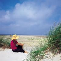Strandidylle auf Amrum / Bildquelle: AmrumTouristik