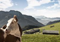 Bildquelle: Chiemgau Tourismus e.V.