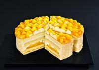 Crème-Mango-Joghurt-Torte von Schöller