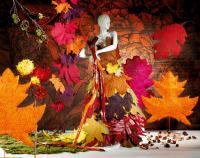 Herbst Dekoration 2013; Bilderquelle Heinrich Woerner GmbH