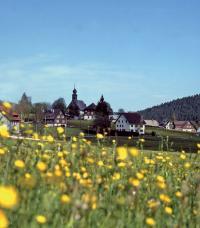 Ansicht von Eisenbach, Rechte Hochschwarzwald Tourismus GmbH