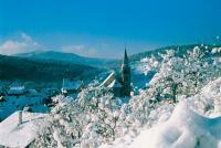 Verschneites Dorf / © CRTA-Hamm