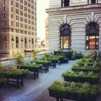 Fairmont San Francisco, TripAdvisor GreenLeader, Gold level2