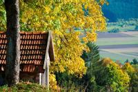 Herbstlandschaft im Frankenwald, alle Bilder Frankenwald Tourismus