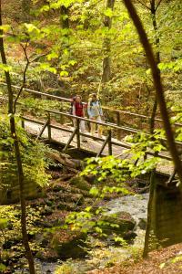 Die Holzbachschlucht, eines der ältesten Naturschutzgebiete Deutschlands ist eine tolle Attraktion für Naturliebhaber und weit über die Ortsgrenzen hinaus bekannt. Eine Holzbrücke führt die Wanderer des Westerwald-Steiges über den romantischen Wildb