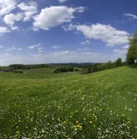 Landschaftsimpressionen bei Lindlar © Naturarena Bergisches Land GmbH