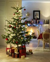 """Weihnachtsbeleuchtung sollte nicht nur schön, sondern auch sicher sein. Prüfzeichen wie """"GS"""" oder """"VDE"""" bieten Verbrauchern Orientierung / Foto: licht.de"""