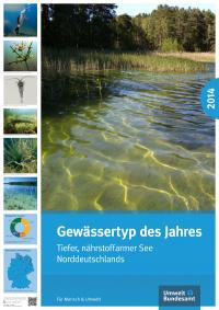 Poster des Umweltamtes zum