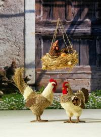 Und so tolle Osterhühner müssen sein, um den Frühling gebührend zu empfangen!