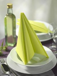 Papstar Tischdeko RC Gedeck grün;