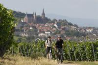 Radeln zwischen Reben in Rheinhessen  / Foto: Rheinhessen-Touristik GmbH