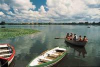 Ruderboote auf dem Seeburger See, Bildrechte TourismusMarketing Niedersachsen GmbH