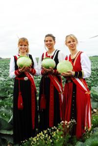 """Kohleregentinnen - Bildquelle """"TASH"""" - Tourismus Agentur Schleswig-Holstein"""