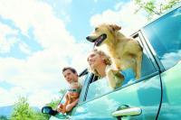 Bei Dorfhotel sind Hunde willkommen / Bildquelle: TUI Deutschland GmbH