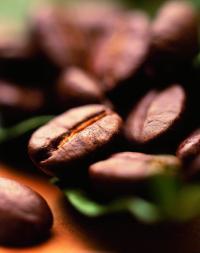 Kaffeebohnen / Bildquelle: Tchibo GmbH