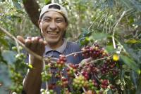 Fairtrade-Kaffeebauer aus Peru / Credits: TransFair e.V. / Foto: C. Nusch