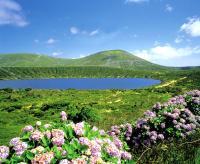 Herrliche Landschaften erkunden TransOcean-Gäste auf einer Kreuzfahrt zu den Azoren