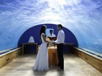 Renewal of Love' Zeremonien unter Wasser, Bildquellen ziererCOMMUNICATIONS GmbH