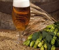 Selbstgebrautes Bier / Quelle: AVIVA