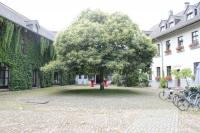 Innenhof / Bildquelle: relatio PR