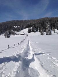 Schneeschuhwandern im Andertal mit Herrn Ortner / Bildquelle: Hotel Eschenhof