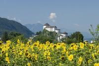Blick auf Festung und Wiese / Bildquelle: Hotel Stadt Kufstein