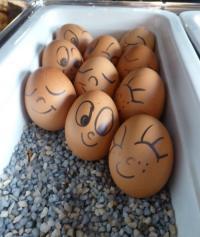 Das baut den Gast auf: Handbemalte, lustige Eier im Lindemann's Hotel Berlin