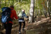 Urlaub am Möhnesee: Auch Wandern ist eine gute Möglichkeit! / Bildnachweis: Wirtschafts- und Tourismus GmbH Möhnesee