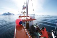 Hering aus Norwegen: Die Herkunft macht den Unterschied