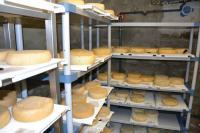 Ziegenkäse aus eigener Produktion: Für die Lagerung ist eine exakte Temperierung wichtig. / Bildquelle: gc Wärmedienste GmbH