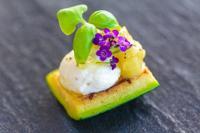 Burrata mit Jalapeño-Basilikum-Salsa auf gegrillter Zucchini / Bildquelle: KOFLER & KOMPANIE GmbH