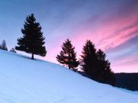 Ein typisches Mittelgebirge ist der Schwarzwald, hier Todtnauberg