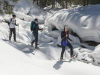 Auf leisen Sohlen durchs Winterwunderland. / Bildquelle: Wildschönau Tourismus
