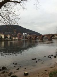 Der Neckar mit Alter Brücke