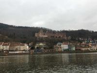 Blick auf das Heidelberger Schloss vom Nordufer des Neckar