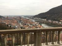 Standort des Fotografen ist der Heildelberger Schlosspark mit Blickrichtung Westen: Die Sofienstraße liegt in Höhe der zweiten Brück, der Theodor-Heuss-Brücke und bietet direkte Nähe zur Heidelberger Altstadt
