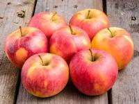 Bio-Äpfel aus dem Alten Land, Transgourmet Ursprung / Bildquelle: Alle Bilder © Transgourmet Deutschland, 2019