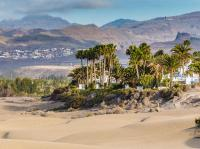Der berühmte Strand von Maspalomas auf Gran Canaria