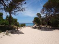 Schöner Strandzugang bei Cala de S'Aguila auf Mallorca / Bildquelle: Sascha Brenning - Hotelier.de
