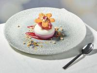 Transgourmet PatiChef Beeren-Joghurt-Dessert / Bildquelle: Transgourmet