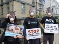 In London demonstrierten PETA-Aktive mit Eselmasken vor der griechischen Botschaft / Bilduqelle: © PETA UK
