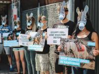 In Stuttgart positionierten sich Aktive mit Eselmasken vor dem griechischen Konsulat, um gegen die Ausbeutung der Tiere auf Santorini zu demonstrieren. / Bildquelle: © PETA Deutschland e.V.
