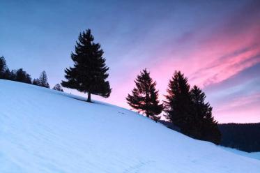 Skipass inklusive - Wie ein Hotel im Schwarzwald den Winter verteidigt