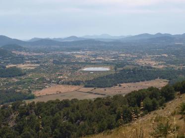 Mallorca - ein besonderes Weinanbaugebiet