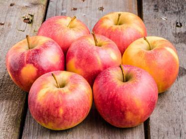 Transgourmet bringt Nachhaltigkeit auf den Frühstückstisch