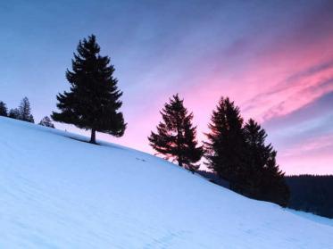 Ab auf die Piste - die schönsten Skigebiete in den Alpen
